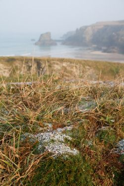 Frosty morning view from Gull Cottage over Porthcothan Bay near Padstow